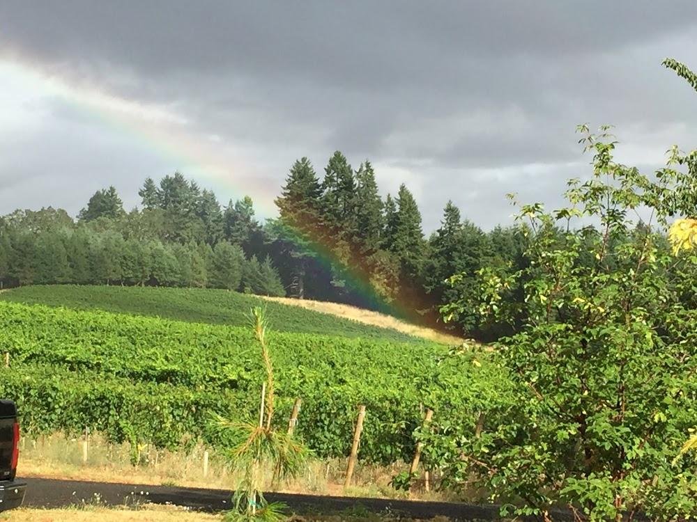 Walnut Ridge Vineyard